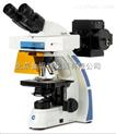 荷兰euromex,Ox3020型双目荧光显微镜