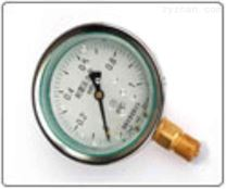 YN耐震壓力表