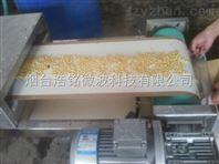 微波瓜子烘干設備