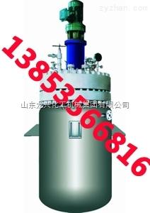 高压釜-山东龙兴化工机械集团