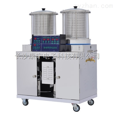 自动煎药包装机(常温2+1)