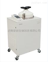 全自動高壓蒸汽滅菌器|新華LMQ.C-100E型滅菌器價格