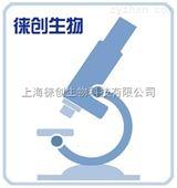 慢病毒包装实验服务,过表达慢病毒实验报价