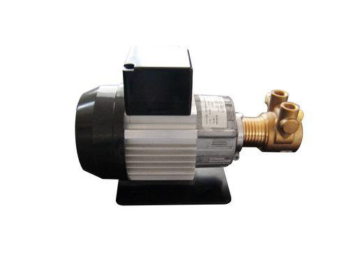 低温循环高压泵DLSB-G1010叶片泵